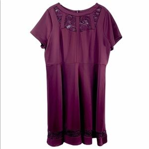 Lane Bryant Dresses - LANE BRYANT maroon lace shirt sleeve dress NWT